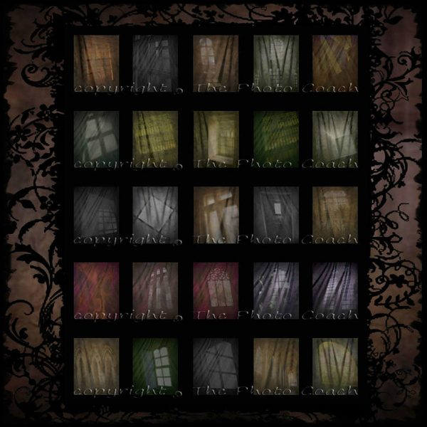Muslin Digital Backdrops thumbs G3